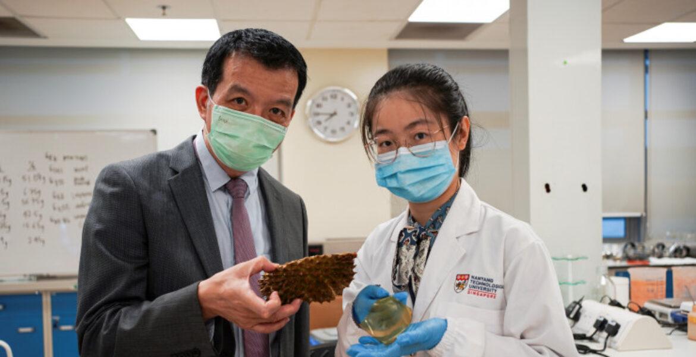 Ученые превратили остатки фруктов в антибактериальные повязки